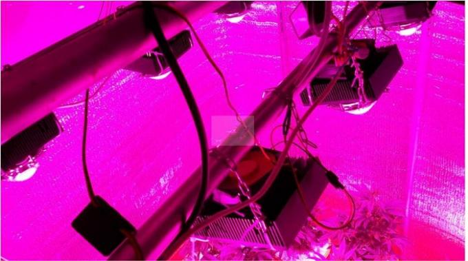 200w Bridgelux Diy Led Grow Light Kit Full Spectrum Real
